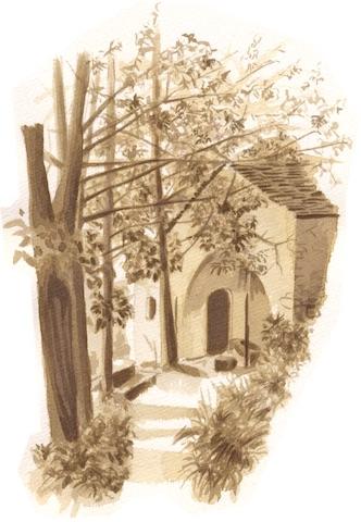 03.Campassi345