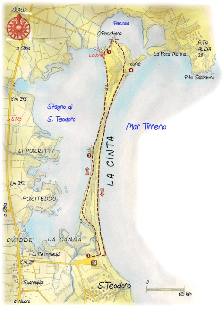 S.teodoro.map