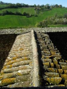 Torrechiara (11)