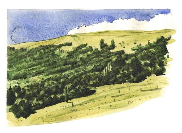 04.M.Ebro335