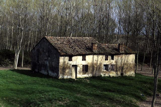 Casa in golena Po