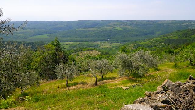 IMGP0603.Valle.Quieto.sopra Piemonte