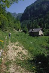 Val Gulva