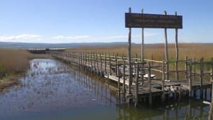 Risultati immagini per lago di lesina passerella