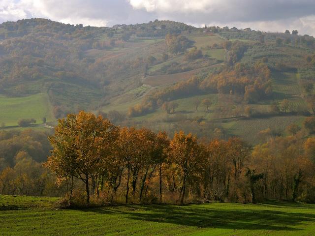 Valle del Calore