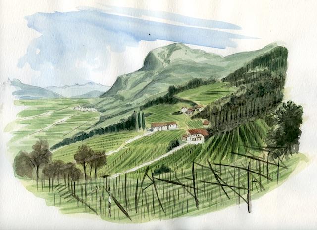 Valle dell'Adige.BZ085