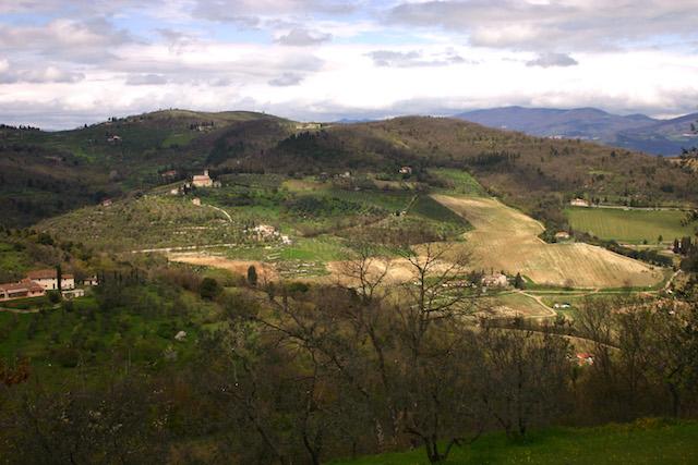 paesaggio-toscano-copia