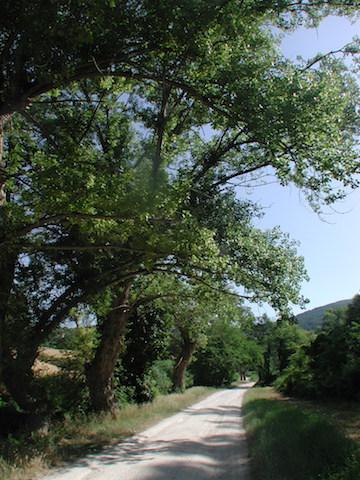 valle-di-camerano