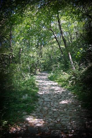 sentiero-m-s-giorgio