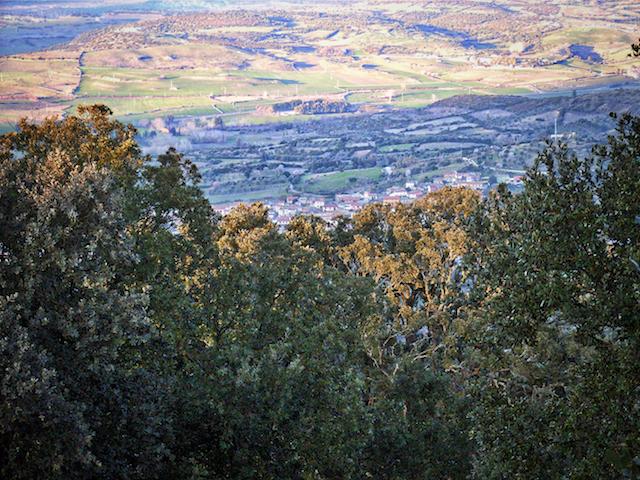Panorama dalla Giara