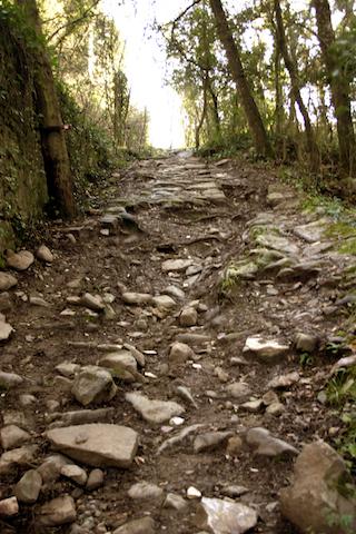 Strada romana.Filicaie