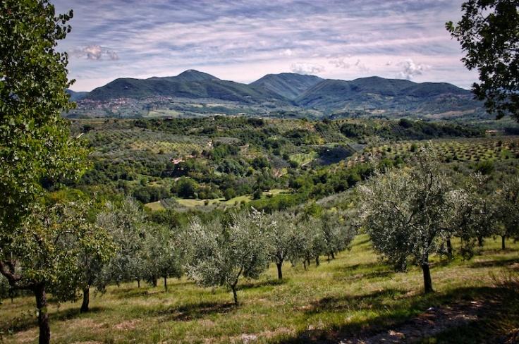 Valle Vara.1